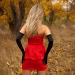 Rear view of pretty young girl in red dress in autumn wood — Stock Photo #7493816