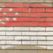 Flag of Singapore on grunge brick wall painted with chalk — Foto Stock