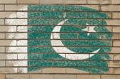 Flaga pakistanu na mur z cegły ilustracja malowane z kredy — Zdjęcie stockowe