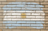 Flag of Argentina on grunge brick wall painted with chalk — Stok fotoğraf