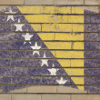 Flag of bosnia and herzegovina on grunge brick wall painted with — Foto Stock