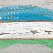 Flag of uzbekistan on grunge wooden texture painted with chalk - Lizenzfreies Foto