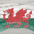 Flag of wales on grunge wooden texture painted with chalk - Lizenzfreies Foto