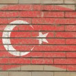 Flag of turkey on grunge brick wall painted with chalk - Lizenzfreies Foto