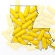 Outline map of Luisiana with transparent pills in the background — Stock Photo
