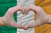 Serce i miłość gestem pokazał przez ręce nad flaga irlandii z powrotem — Zdjęcie stockowe