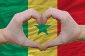 Heart and love gesture showed by hands over flag of senegal back — Stock Photo