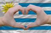Heart and love gesture showed by hands over flag of uruguay back — Stock Photo