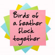 "Proverb ""Birds of feather flock together"" written on bunch of — Stock Photo #7533094"