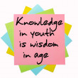 "Proverb "" Knowledge in youth is wisdom in age "" written on bunch - Stock Photo"