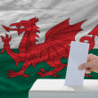 Royalty-Free Stock Photo: Man voting on elections in wales in front of flag