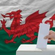 Stock Photo: Mvoting on elections in wales in front of flag