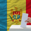 Stock Photo: Mvoting on elections in moldovin front of flag
