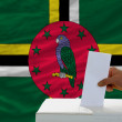 Stock Photo: Mvoting on elections in dominicin front of flag