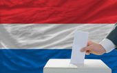 Man voting on elections in netherlands in front of flag — Stok fotoğraf