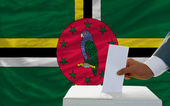 Man voting on elections in dominica in front of flag — Stock Photo