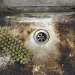 Dirty, unhygienic washbowl — Stock Photo #6925918