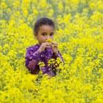 Beautiful In Yellow — Stock Photo #6803057