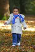 Running Through The Leaves — Stock Photo