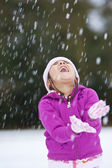 Fun In The Snow — Stock Photo