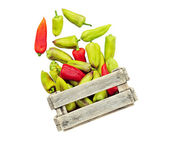 Pepper in a box isolated. — Stock Photo