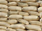 Bags of maize for food aid — Stock Photo
