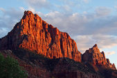 The Watchman - Zion National Park — Stock Photo