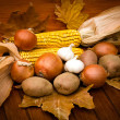 Autumn's harvest is on the table — Stock Photo