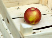 Successful sale of fruit - Apple in crate — Stock Photo