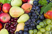 Handful of different fresh fruit — Stockfoto
