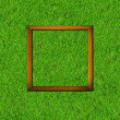 Wood frame on green grass field background — Foto Stock