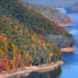 Allegheny national forest — Stockfoto