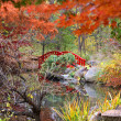Japanese garden in the autumn - Stock Photo