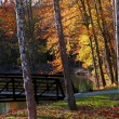 Autumn in Huron state park — Stock Photo