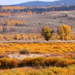Autumn landscape in Wyoming - Stock Photo