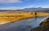 Yellowstone river — Stock Photo