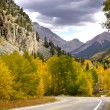 Autumn in Colorado — Stock Photo #7619286