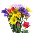 Flower bunch — Stock Photo
