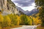 在科罗拉多州的秋天 — 图库照片