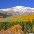Stock Photo: Mount Elbert