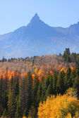 Fall in Grand Tetons — Stock Photo