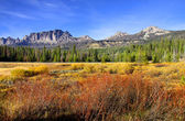 Scenic autumn landscape — Stock Photo