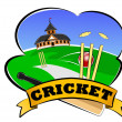 Cricket club — Foto de stock #7825177