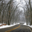 Stock Photo: Winter Drive Way