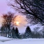Winter scene — Stock Photo #7855193