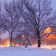 Winter scene — Stock Photo #7855237