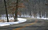Winter Drive Way — Stock Photo