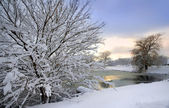 Scenic Winter Landscape — Stock Photo