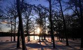 Puesta del sol del invierno — Foto de Stock