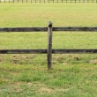Horses wooden fence - Stock Photo